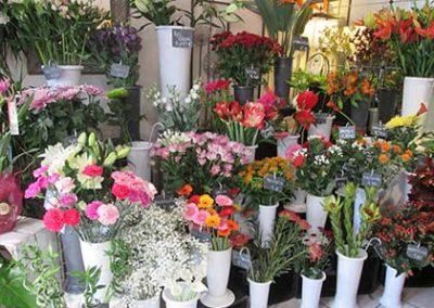 Présentation fleurs Arnage